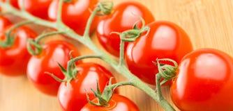 Tomates de cereza en la vid Imagenes de archivo