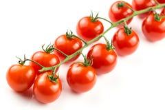 Tomates de cereza en la vid Foto de archivo