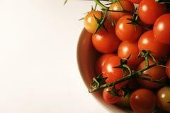 Tomates de cereza en la vid Imagen de archivo libre de regalías
