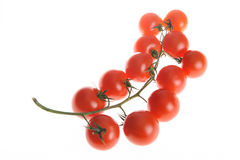 Tomates de cereza en rama imagenes de archivo