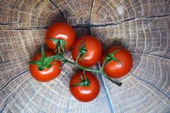 Tomates de cereza en una ramita en un tablero de madera Imágenes de archivo libres de regalías