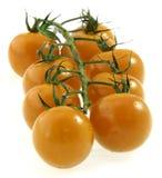 Tomates de cereza en vid. Fotografía de archivo libre de regalías