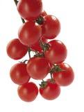 Tomates de cereza en vid Foto de archivo