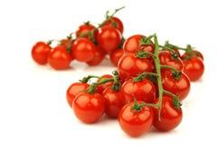 Tomates de cereza frescos en la vid Imagen de archivo