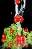 Tomates de cereza frescos rojos y lechuga verde en agua Fotos de archivo libres de regalías