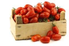 Tomates de cereza italianos frescos en la vid Fotos de archivo