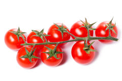Tomates de cereza jugosos Imagen de archivo libre de regalías