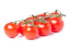 Tomates de cereza jugosos Imagenes de archivo