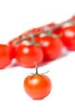 Tomates de cereza jugosos Foto de archivo libre de regalías