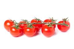 Tomates de cereza jugosos Foto de archivo