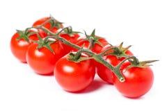 Tomates de cereza jugosos Fotografía de archivo libre de regalías