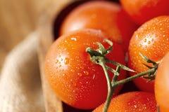 Tomates de cereza mojados Imágenes de archivo libres de regalías