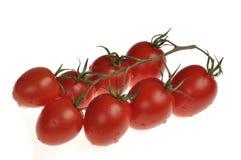 Tomates de cereza mojados en la vid Fotografía de archivo libre de regalías