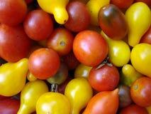 Tomates de cereza multicolores fotografía de archivo