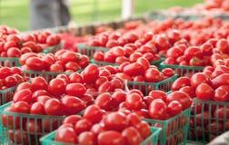 Tomates de cereza orgánicos Foto de archivo libre de regalías