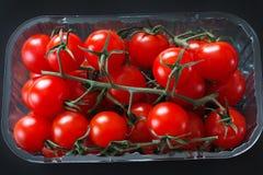 Tomates de cereza orgánicos Imagen de archivo libre de regalías
