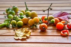 Tomates de cereza orgánicos en colores de la pendiente Fotos de archivo libres de regalías