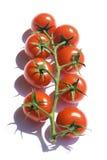 Tomates de cereza rojos Fotografía de archivo libre de regalías