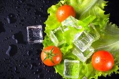 Tomates de cereza rojos, ensalada verde y cubos de hielo en la tabla mojada negra Fotos de archivo libres de regalías