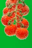 Tomates de cereza rojos maduros imagen de archivo