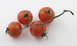 Tomates de chéri sur une vigne Images libres de droits