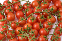 Tomates de Cherri Images libres de droits