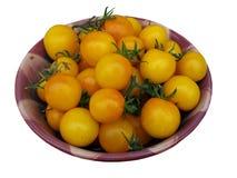 Tomates de ciruelo amarillos Imagen de archivo libre de regalías