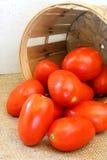 Tomates de ciruelo y cesta de la granja Fotografía de archivo