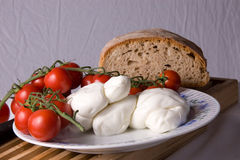 Tomates de ciruelo y mozarela Foto de archivo