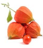 Tomates de cosse ou physalis avec la feuille d'isolement sur le fond blanc Photo libre de droits