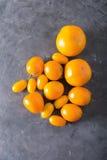 Tomates de différentes variétés Fond coloré de tomates de tomates Concept sain de nourriture de tomates fraîches Images libres de droits