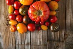 Tomates de diversas variedades Fondo colorido de los tomates de los tomates Imágenes de archivo libres de regalías