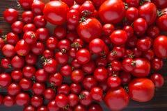 Tomates de diversas variedades Fondo rojo de los tomates de los tomates Concepto sano de la comida de los tomates frescos Imagenes de archivo