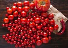Tomates de diversas variedades Fondo rojo de los tomates de los tomates Tomates frescos Fotografía de archivo libre de regalías