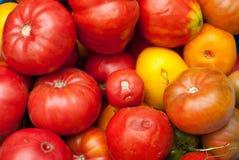 Tomates de Eco Imagem de Stock Royalty Free