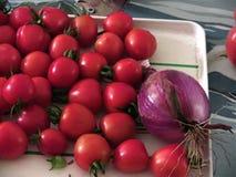 Tomates de la ensalada y una cebolla Foto de archivo