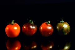 Tomates de la herencia en fondo reflexivo negro Imagen de archivo libre de regalías