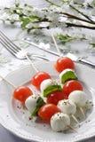 Tomates de la mozzarella imagen de archivo