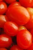 Tomates de la uva Fotos de archivo
