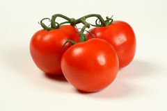 Tomates de la vid Imagen de archivo