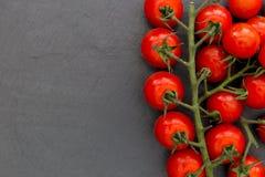 Tomates de la vid de la cereza en fondo oscuro con el espacio de la copia Imagen de archivo libre de regalías