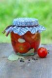 Tomates de mise en boîte Image stock