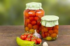 Tomates de mise en boîte Image libre de droits