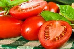 Tomates de pâte avec le basilic découpé en tranches Images libres de droits