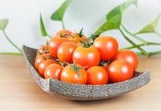 Tomates de plat en bois Photographie stock