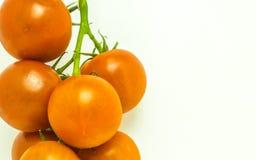 Tomates de vigne images stock