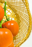 Tomates de vigne Photographie stock