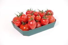 Tomates de vigne dans le plateau vert Photographie stock