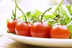 Tomates de vigne sur une fin de plaque de salade vers le haut Images stock
