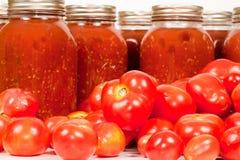 Tomates de zone avec la sauce tomate Image libre de droits